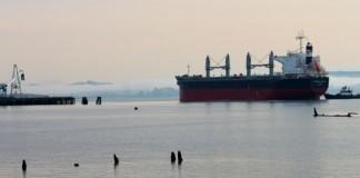 port of grays harbor