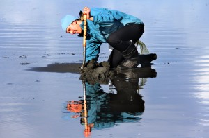 Razor Clam Dig @ Twin Harbors, Long Beach | Grayland | Washington | United States