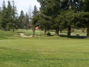oaksridge golf elma