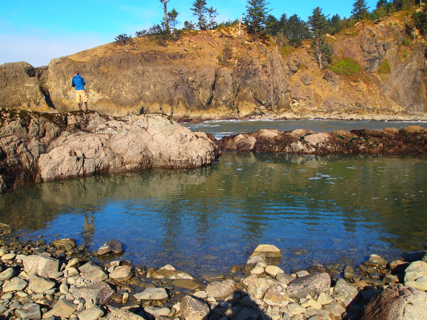 Four impressive tide pool beaches on the olympic peninsula p2153241 medium nvjuhfo Choice Image