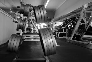 monte fitness