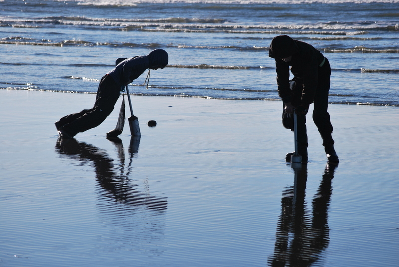 Holiday razor clam dig approved for copalis beach for Missouri fishing license age