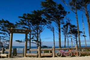 Bicycles by the beach at Seabrook.