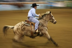 Grays Harbor Mounted Posse Indoor Pro Rodeo @ Grays Harbor Fairgrounds | Elma | Washington | United States