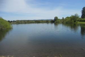 vance creek park