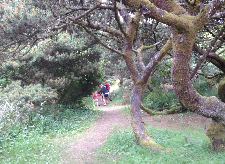 Nature Walks For Preschoolers Explore The Outdoors In Grays Harbor