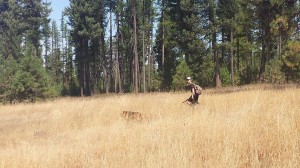 Hunting options around Grays Harbor are many. Photo credit: Tyler Staley.