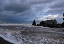 storm watching grays harbor