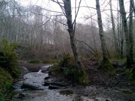lake swano trail