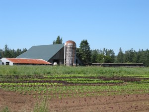 Chehalis Basin Partnership Meeting: Agriculture in the Chehalis @ Lucky Eagle Casino | Rochester | Washington | United States