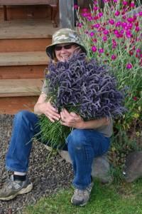 dale lavender farm