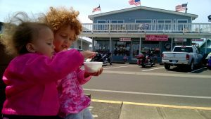 westport ice cream