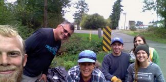 grays harbor cleanup