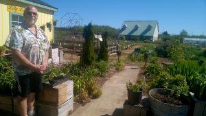 lily lane farm