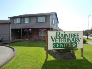 raintree veterinary center