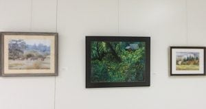 Grays Harbor Community Hospital Art Gallery
