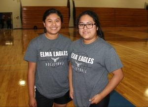 elma volleyball
