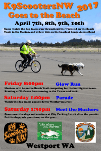 K9ScootersNW Glow Run @ Beach Trail | Westport | Washington | United States