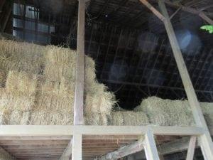dew acres farm