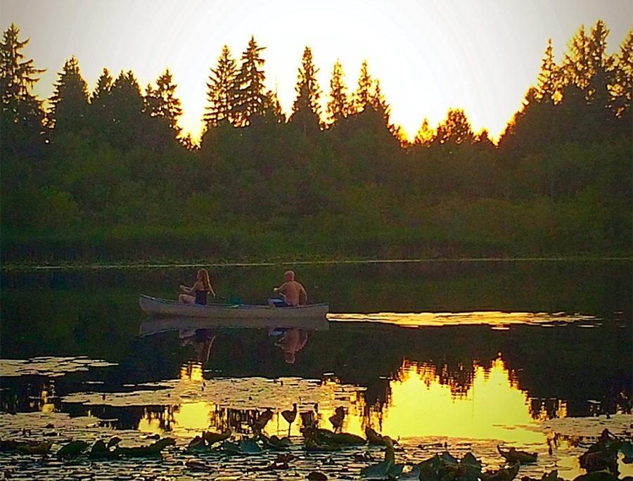 paddle ocean shores