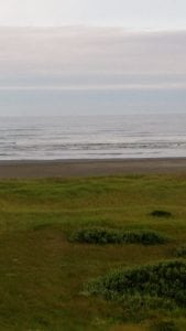Quinault Beach vacation