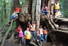 Grays Harbor College Forestry