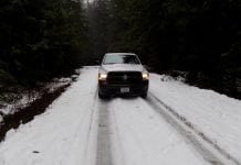 Grays Harbor Snow