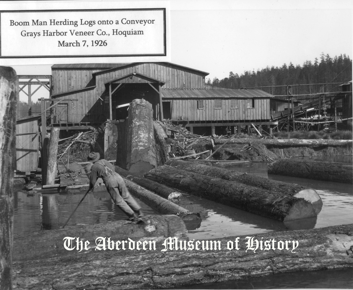 Grays Harbor Logging History 1926 Photo courtesy Aberdeen Museum of History