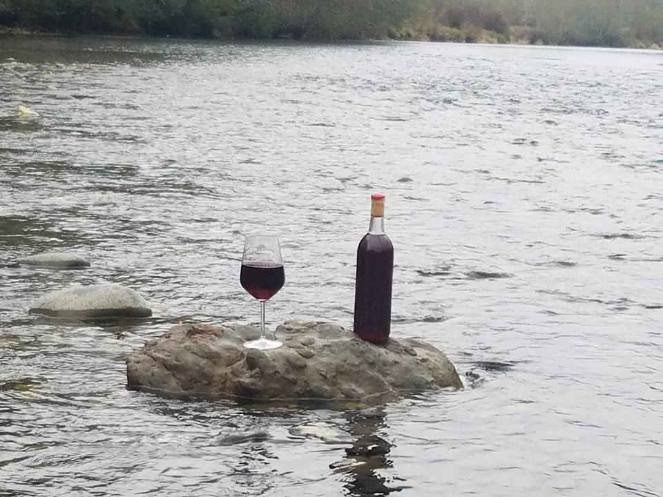 Wynoochee River Winery Wine Bottle on Rock
