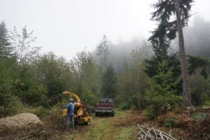 Jared and Audrey Neibaur Homesteading Grays Harbor County Clearing the Land