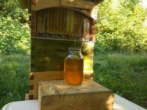 Jared and Audrey Neibaur Homesteading Grays Harbor County Flow Hive
