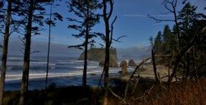 The Whale Trail Ruby Beach via Douglas Scott