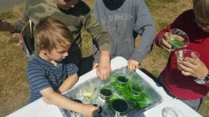 Library in the Park Science Experiment