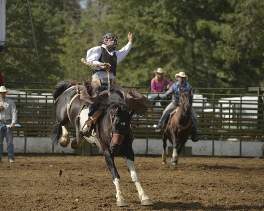 Rodeo Bronc Riding