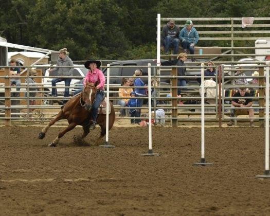 Bob Hitt Rodeo Poles