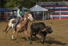 Rodeo Team Roping