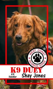 DUEY Grays Harbor search and rescue dog