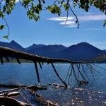 Lake Quinault Camping