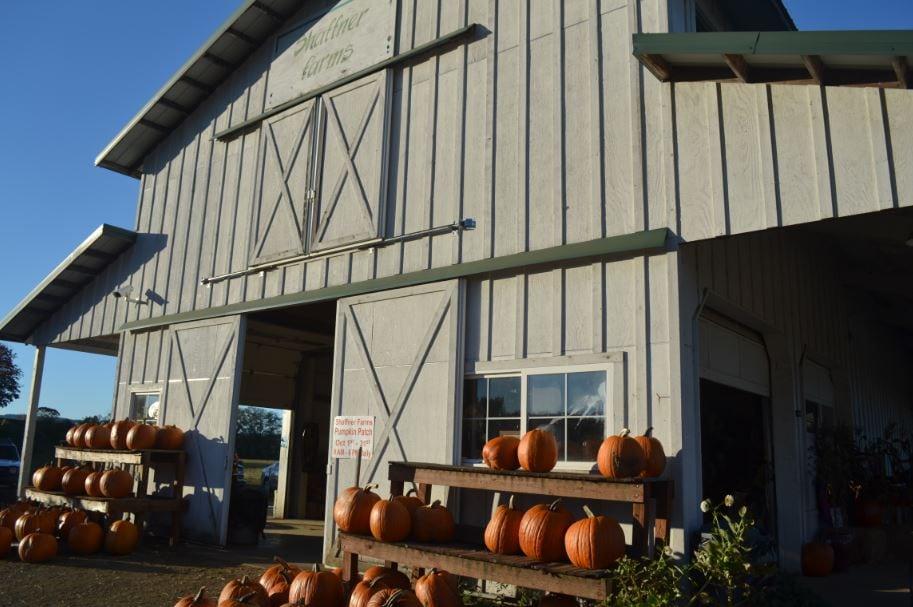 Shaffner Farms Barn