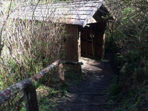 Lake Sylvia Trail