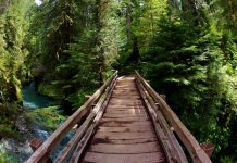 Pony Bridge in Olympic National Park