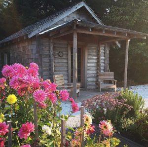 Dorothy Anderson Cabin
