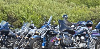 Motorcycles lined up at Hog Wild event in Ocean Shores
