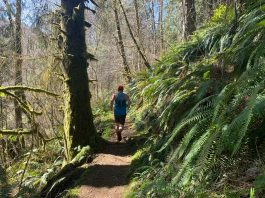 running trails grays Harbor