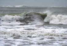 How to Storm Watch Grays Harbor Coast Waves on the coast