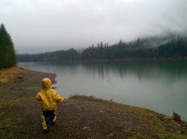 Rain in Grays Harbor County