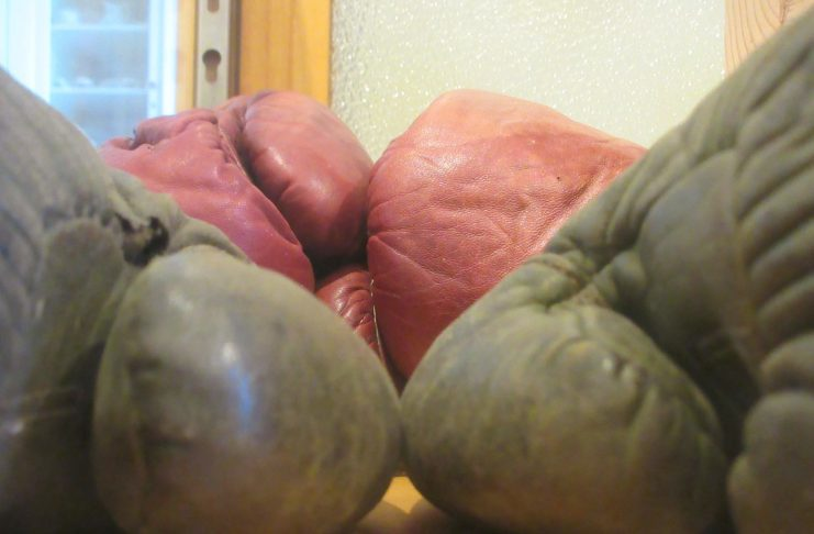 Polson-Museum-Hometown-Teams-Boxing-Gloves