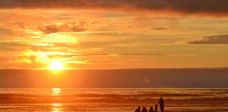 Where to walk on Beach Grays Harbor-beach-