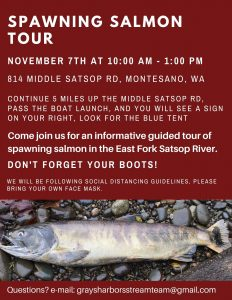 Spawning Salmon Tour @ Forterra Property
