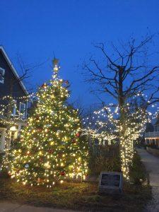 holiday lights grays harbor Seabrook-christmas-trees-and-lights